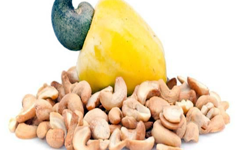 We are the leading exporter of edible nuts in the region. The cashews we select are the <br> highest quality.  They are processed and packaged for global distribution. <br>           For further information, please email us at:           <a href='mailto:Agrics@africanindustries.com '>Agric@africanindustries.com </a>