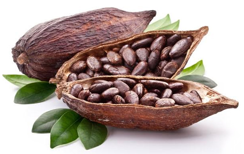 The highest quality  cocoa beans are procured directly from farms and packaged perfectly to distribute to our global clientele. <br>           For further information, please email us at:           <a href='mailto:agric@africanindustries.com'>Agric@africanindustries.com</a>